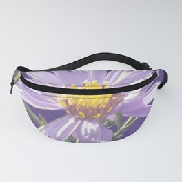 Aster No Questions Fanny Pack