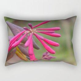 Trumpet Honeysuckle - Buds of Coral Woodbine  Rectangular Pillow