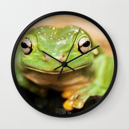 Magnificent Tree Frog Wall Clock