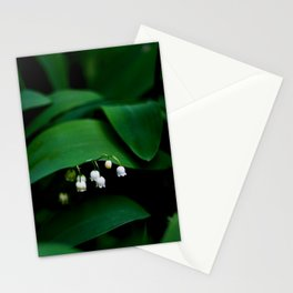 Lily Of the Valley With Large Green Leaves Stationery Cards