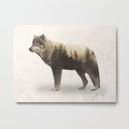 Wolf (Double Exposure Animal Portrait) Metal Print