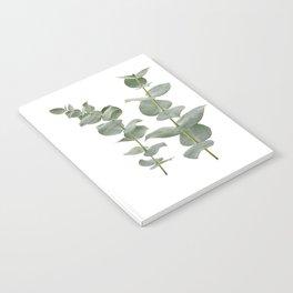 Eucalyptus Branches II Notebook