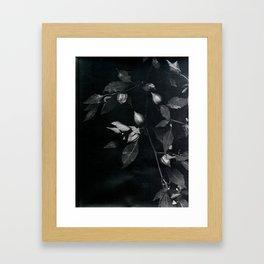 redemption jungle Framed Art Print