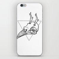 antler iPhone & iPod Skins featuring Antler Bird by HATCH