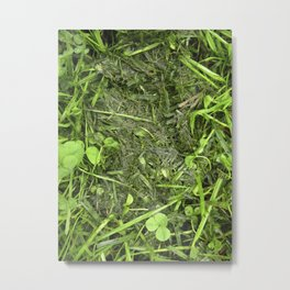 TRANSITION GREEN Metal Print