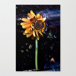 Flamin' Flower Canvas Print