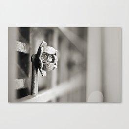 Fence B/W Canvas Print