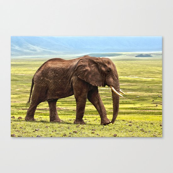 Elephant Safari Canvas Print