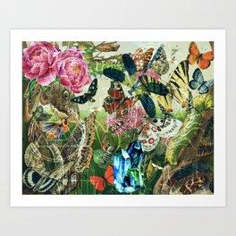 The Cabinet of Curiosities Art Print