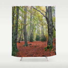 Walking Through Epping Forest Shower Curtain