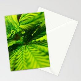 Marijuana leaf. Stationery Cards