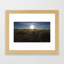 Sun Over the Grass Framed Art Print