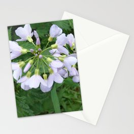 little purple flowers Stationery Cards