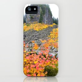 Table Rock Wilderness Landscape iPhone Case