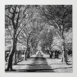 Cemetery path. Canvas Print
