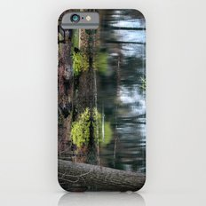 Cemetery Reflections iPhone 6s Slim Case