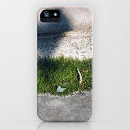 Longwood Gardens - Spring Series 98 iPhone Case