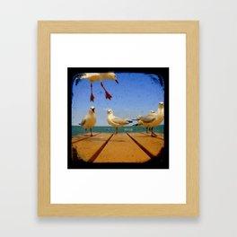 Seagulls - Number 1 from set of 4 Framed Art Print