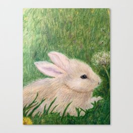 Rabbit in Grass With Dandelion Canvas Print
