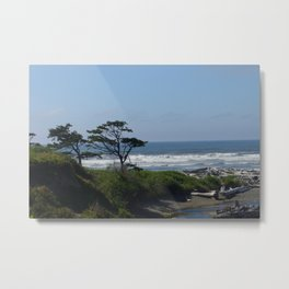 Washington coast Metal Print