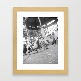 Pigeons at the plaza Framed Art Print