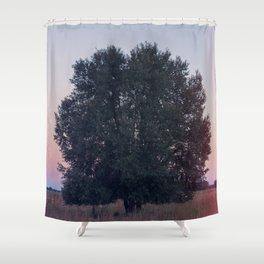 Dawn Pt. 1 Shower Curtain