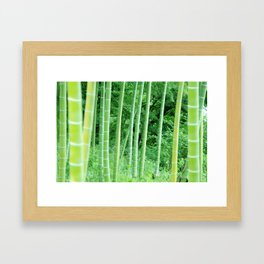 Japanese Bamboo Forest Photography Framed Art Print