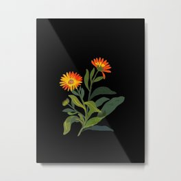 Calendula Officinalis Mary Delany Floral Paper Collage Delicate Vintage Flowers Metal Print