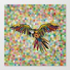 harlequin parrot Canvas Print