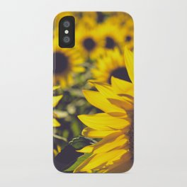 Summer Sunflower Love iPhone Case