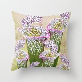 Sarracenia leucophylla Throw Pillow