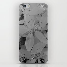 Black and White Blossoms iPhone Skin