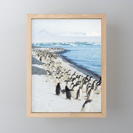 Marching Adelies at Brown Bluff, Antarctica Framed Mini Art Print