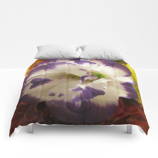 Beauty in Beauty Comforters