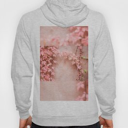 Wall abstract old ivy leaves Hoody