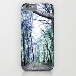 Pathway to Bliss Baby Blue Light Gree iPhone Case