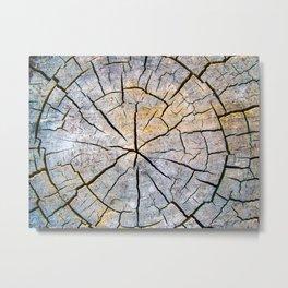Woodgrain Texture Metal Print