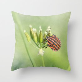 One More Bottle Does Not Hurt Throw Pillow