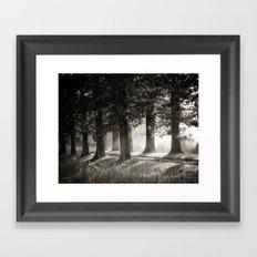 Summers' End Framed Art Print