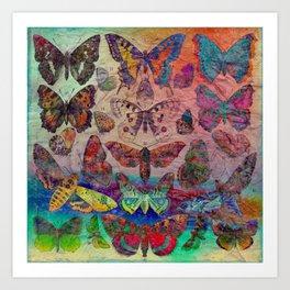 Butterflies & Moths Art Print
