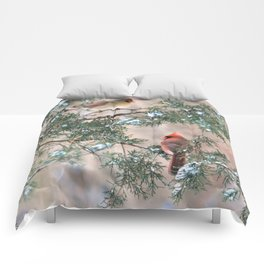 Winter Pair Cardinals (sq) Comforters