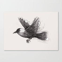 Flying jackdaw Canvas Print