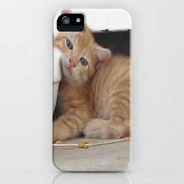 Kittie iPhone Case