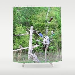 Rural Rustic Knotted Pine Wood Fence Birdhouse Bottle Tree Shower Curtain