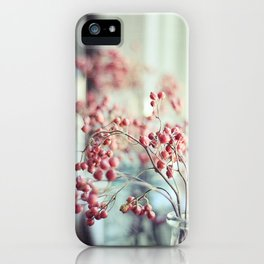 Rose Hips in a Window Still Life Autumn Botanical iPhone Case