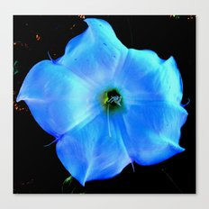 Translucent Canvas Print