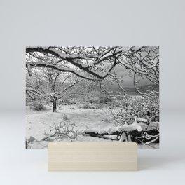 Snowland Mini Art Print