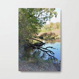 Where Canoes and Raccoons Go Series, No. 2 Metal Print