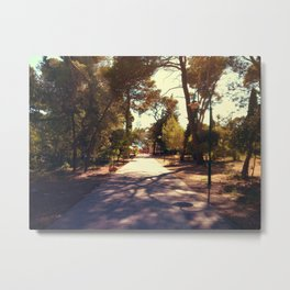 Path to relax Metal Print
