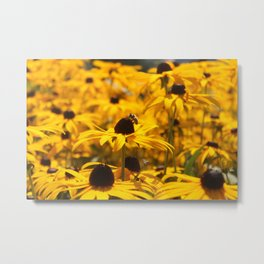 A bee and its nectar. Metal Print